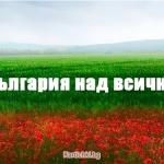 user avatar 84438
