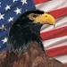 user avatar 12792