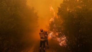 64 жертви и 135 ранени при пожарите в Португалия