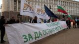 Организации обвиняват WWF в намеса във вътрешните работи