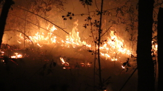 Евакуация заради горски пожар и в Хърватска