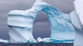 Как природата пее в Антарктида