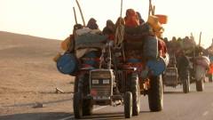 """Талибаните в Афганистан - наследници на проекта на """"Ислямска държава"""" в Сирия и Ирак"""