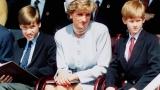 Принц Уилям призова за край на мълчанието в кралското семейство