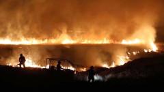 Най-горещият зимен ден на Острова предизвика опустошителни пожари