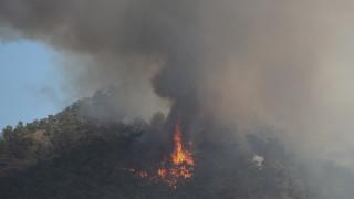 Големи пожари продължават да бушуват в Турция