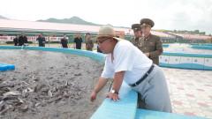 Путин покани Ким Чен-ун да посети Москва