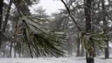 Жълт код за студ в цяла България