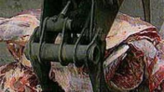 Тонове храни с изтекъл срок на годност откриха в складове в Унгария