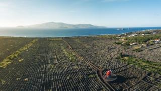 В Южна Румъния откриват фабрика за базалтова вата за 50 милиона евро