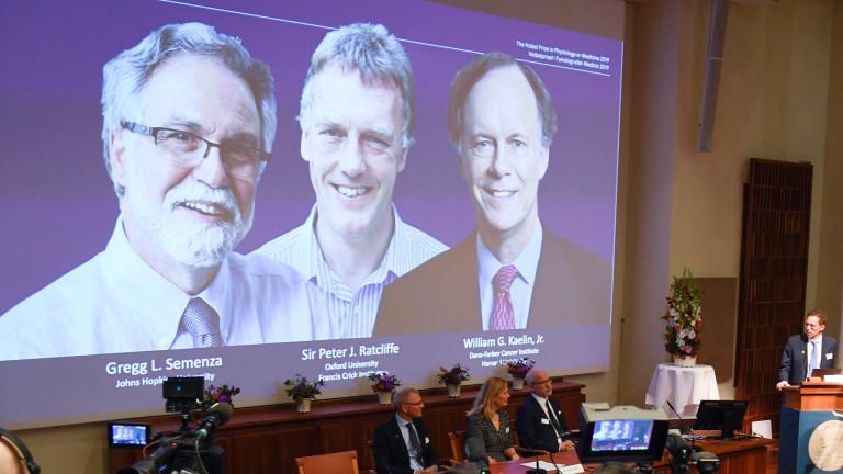 Нобелът за медицина отиде при трима учени, изследвали хипоксията