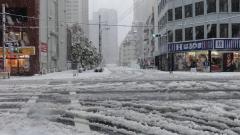 Над 160 полета са отменени в Япония заради обилните снеговалежи