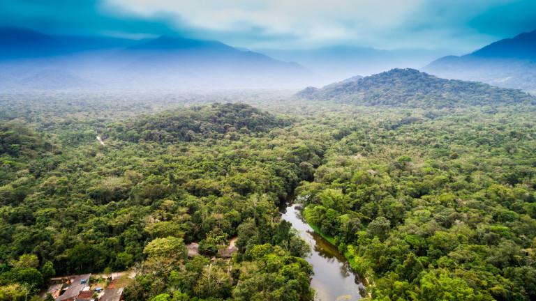 Амазония е най-зеленото кътче на нашата планета,което обаче в последните