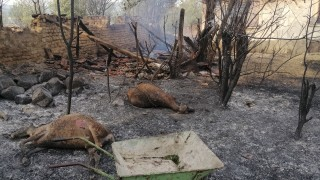 Евакуират Старосел заради огнено бедствие, вертолет отива да гаси
