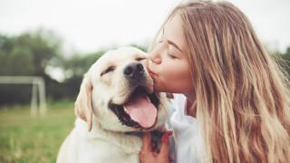Колко е вредно да прегръщаме и целуваме домашния любимец