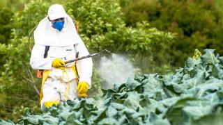 Как изкуствен подсладител се превърна в инсектицид