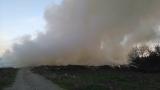 Пожар край Варна засегна и борова гора
