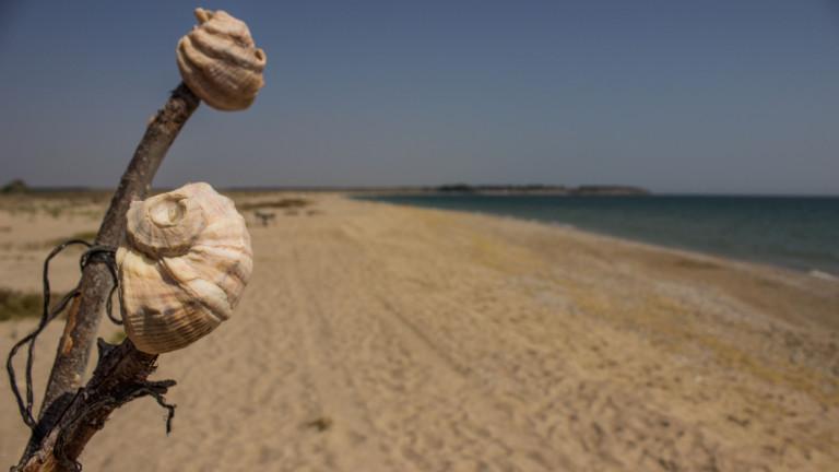 """Ангелкова спря стопанисването на плаж """"Липите"""""""
