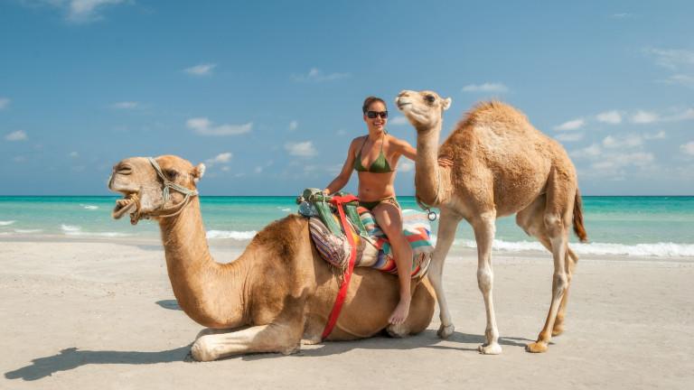 Средиземноморска туристическа диета: Тунис