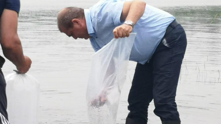 Снимка: Проверяват с полиция за незаконни животински отпадъци в Сливенско