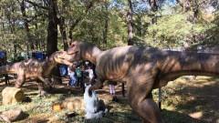С какво точно динозаврите пленяват въображението на децата