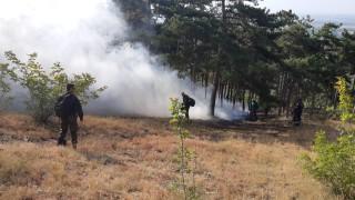 Горският пожар край село Дълбоки продължава да бушува
