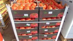 """Русия губи от """"доматената война"""" с Турция $1,5 милиарда"""