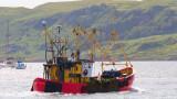 ЕС поднови за три месеца риболовните квоти след Брекзит