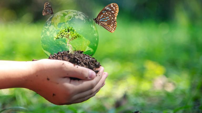 Близо 200 страни приеха декларация за борба срещу загубата на биоразнообразие