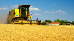 Рекордни сривове на земеделските ренти в Добруджа през 2020-а