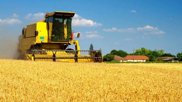Износът на зърно от Румъния нараства с 42% за година