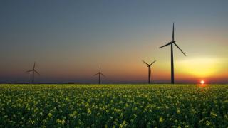Кой ще бъде най-големият пазар за възобновяема енергия в света?