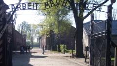 """95-годишен бивш санитар от """"Аушвиц"""" отива на съд, отговаря за смъртта на 3 681 души"""