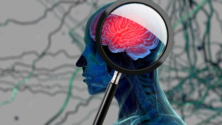 Може би по-често се срещат от известното по-рано потенциалнифатални мозъчни