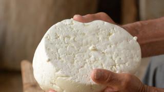Изгубеният вкус на българското сирене