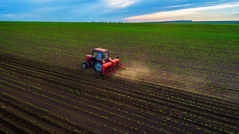 Кои са най-големите земеделски производители в света?