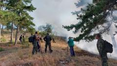 Пожарът край село Дълбоки е локализиран