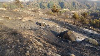 Екокатастрофа остави след себе си пожарът в Кресненското дефиле
