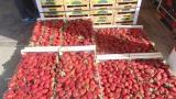 Нелоялните търговски практики са 70%, обобщиха от Асоциацията на потребителите