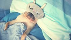 Кога сънят става опасен