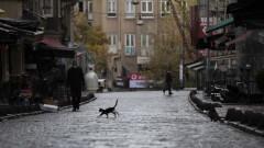 Турция отново счупи рекорда за починали от COVID-19 за 24 часа