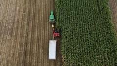 Над 60% от земеделските стопанства у нас са изчезнали за 10 години