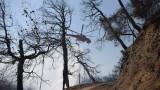 Няма данни за пострадали българи при пожарите в Пелопонес
