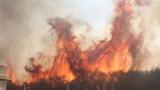Пожар стигна до къщите в бургаското село Светлина