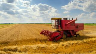 Жътвата ще е тежка - над 70% по-нисък добив досега в сравнение с 2019-а