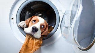 Всичко, което може да перем в пералня