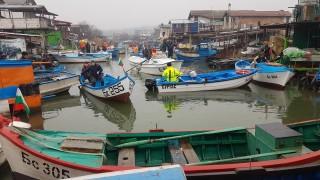 Рибари в Бургаско излязоха на мълчалив протест