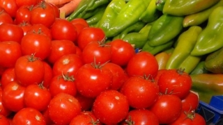 Земеделски производители поискаха мита за вноса от трети страни