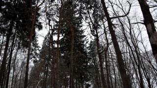 Забранява се придвижването в две благоевградски села
