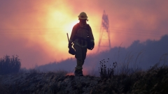 700 души са евакуирани в Калифорния заради горски пожар